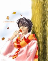 Harry in autumn school by porsuke66