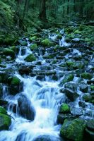 Cascading Falls by indigohippie