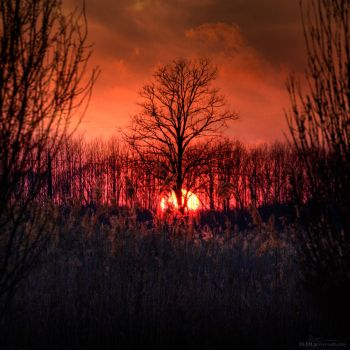 Eventide by BLPH