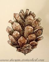 Pinecone in fineliner by sharmz