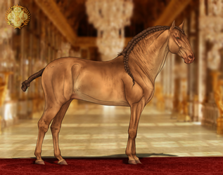 RSI Dragao do Royal by CalyArt