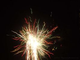 Feux artifice IV by Made-in-Popsiinette