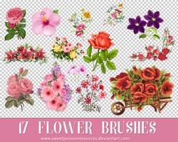 Flower Brushes - Photoshop by sweetpoisonresources