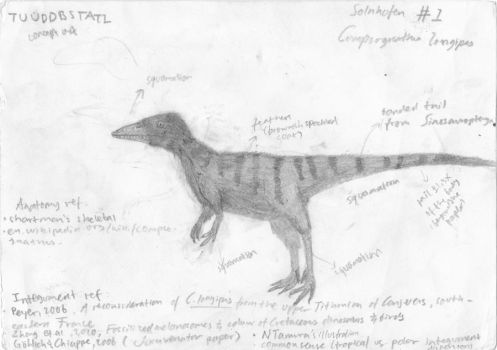 TUUDDBSTATI concept : Compsognathus by Evenape