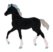 N2844 Padro Foal Design by casinuba