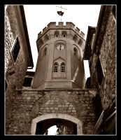 The old tower hours by VesnaRa014