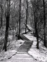 stairs to heaven.. by dimaffi