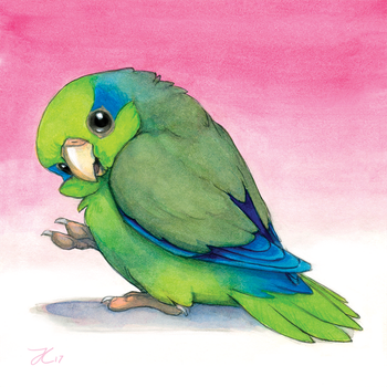 Pacific Parrotlet by OnyxSerpent