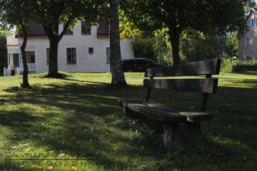 Shady Park Bench by cleriksson