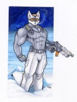Arctic recon by wolfgangcake