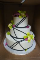 Wedding cake 195 by ninny85310
