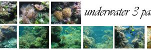 underwater III pack by syccas-stock