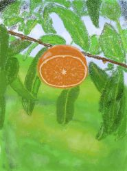 Orange tree by MadLia