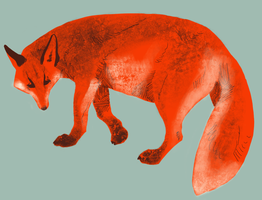 Fox by Quadrupedal