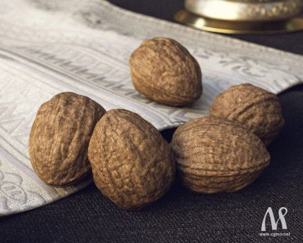 Walnuts-wip1 by MatejMo
