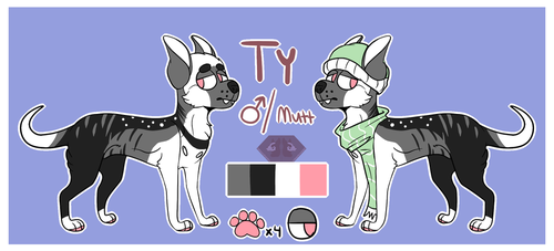 Ty Reference Sheet by NightmaresBeginHere