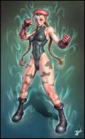 Cammy-Solo Version by HecM