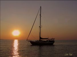 Darwin harbour cruise II by Zlata-Petal