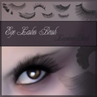 Eye Lashes by Lugubrum-stock by lugubrum-stock