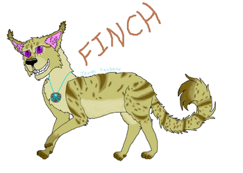 Finch [Art Contest Entry] by Flippyisadorable