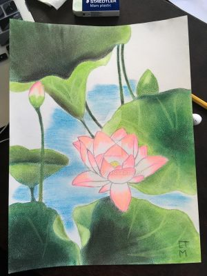 Lotus Pond by LillyTate