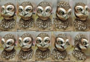 Burrowing OWl mask commission by Crystumes