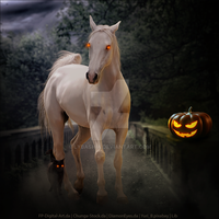 HEE Horse Avatar | Witch Doctor by LargestBirdie