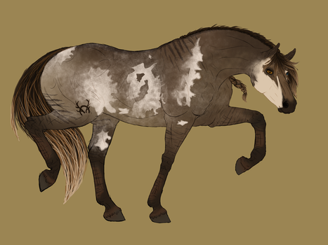 -SR Smokey by The-Last-Filly