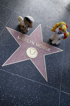 Unity and Miss Libussa on Hollywood Walk of Fame by Cabraloca