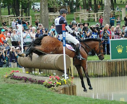 Rolex 2010 - Cool Mountain by MightySquirrel