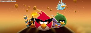 Angry Birds - Facebook Cover by rockIT-RH