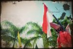 For you Indonesia from Jogja by raffdaime