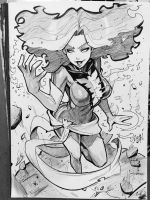 Dark Phoenix Florida SuperCon Comission by reiq