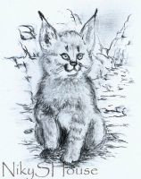 Little Lynx by NikySHouse