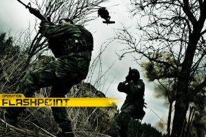 Operation Flashpoint by Gzaba