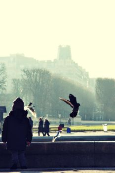 paris des desirs by touch-the-rainbow