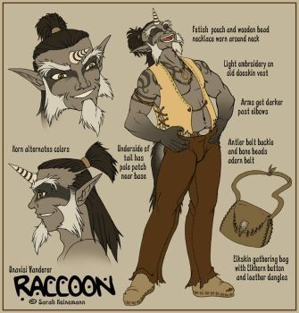 Raccoon Character Design by ladyofdragons