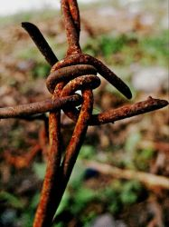 Rust by jbcaccam