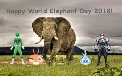 Happy World Elephant Day 2018! by RaphaelFernandez2001