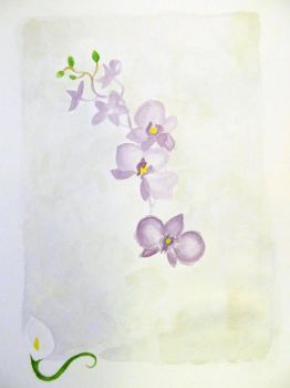 Paint Sketch: Orchids and Easter Lily by lekaylea