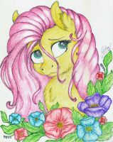 Fluttershy by Check3256