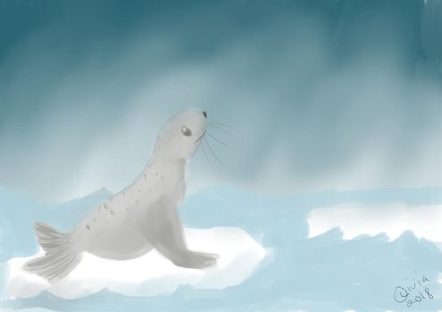 Seal In The Storm by Raiinbolivia