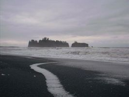 Island off Rialto - Forks WA by RC-ForksWA