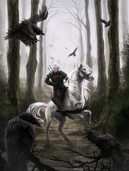 The Witcher. by Safiru