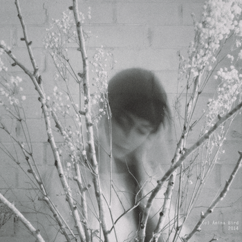 The story of a girl who never saw her own face by Anina-Bird