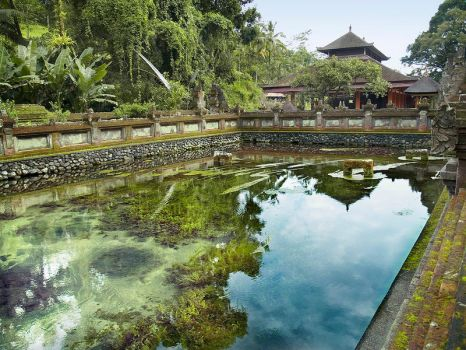 Tampak Siring by pandagenomeproject