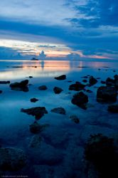Camotes by cachobong