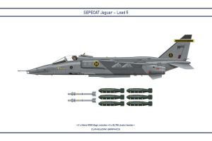 Jaguar Load 5 by WS-Clave