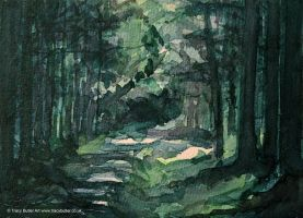 Tracy Butler Woodland Path by tracybutlerart