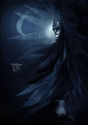 Shadows of the bat by DamienWorm